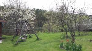 Sodas pavasarį