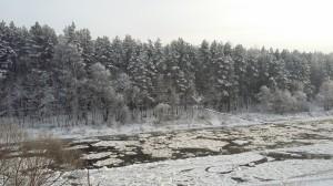 Žiema pro langus